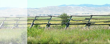 fence and mountain range